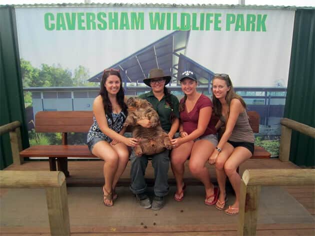 Caversham Wildlife Park gvies you the chance to get up close to some of Australia's most famous residents, including a 36kg wombat!