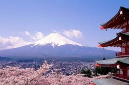Teach English in Japan | Study and Go Abroad
