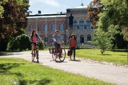 Experience an Education in Sweden